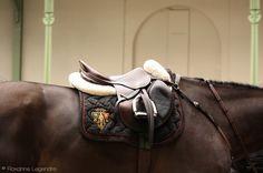 www.pegasebuzz.com/leblog | Equestrian Photographye by Roxanne Legendre : Saddles - Saut Hermès