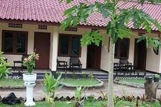 Hotel Murah Di Lombok Untuk Backpacker