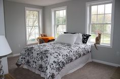 @Melany Anderson  this is my new bedroom color! valspar notre dame