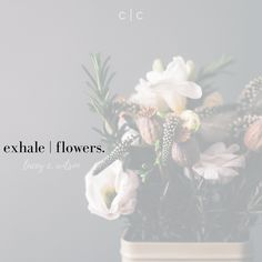 exhale | flowers