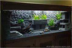 Dramatic AquaScapes - DIY Aquarium Background