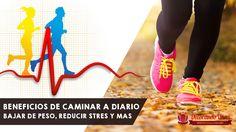 10 Minutos de caminata diaria puede ayudarte a bajar de peso - http://xn--decorandouas-jhb.net/bajar-de-peso-y-otros-beneficios-de-caminar/