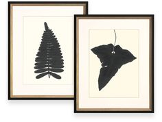 Botanical Garden: Inspired by a series of antiques, the Black Ferns giclee prints from Ambler Art Group make a compelling statement with contrasting white linen mat and antique silver and black frame. October 2014 #hpmkt