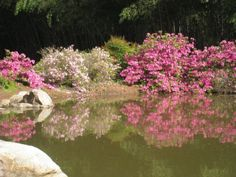 Birmingham Botanical Gardens: a must-see in Alabama! country-magazine.com