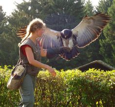 Female Falconer with Eagle in Hellenthal (Germany) - Pixdaus