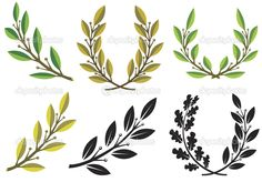 depositphotos_5813559-Laurel-wreaths-and-branches.jpg (1023×715)