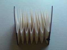 variation 1 of 10 accordion books by Sarah Mitchell