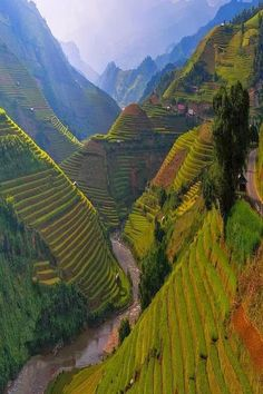 Fun Place: Rice Terrace, Mù Cang Chải District, Vietnam: