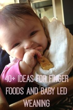 40+ ideas for parents trying to do baby led weaning with no teeth in their baby's mouth! All of these worked with my baby, great for finger food ideas too!