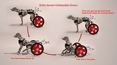 I just bought this and love it. SitGo Dog Pet Wheelchair Revolution All Sizes (L) . you can see what others said about it here http://bridgerguide.com/sitgo-dog-pet-wheelchair-revolution-all-sizes-l/