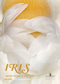 "Con su número 18, la revista 'Agenda Iris' dice ""hasta pronto"" - http://www.aefona.org/numero-18revista-agenda-iris/"