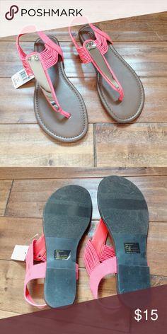 NWT MASSINI CORAL SANDAL 8 NWT MASSINI CORAL SANDAL 8 massini Shoes Sandals