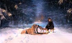 Ces magnifiques photographies de Elena Shumilovaplongent le spectateur dans un monde merveilleux qui s'articule autour de deux garçons et leurs adorables animaux: chiens, chat, canetons et lapins. - Publicité - Profitant de couleurs naturelles, des conditions météorologiques et de paysages enchanteurs, l'artiste russe crée des photographies chaleureuses et réconfortantes qui vous laisseront sans voix. Les …