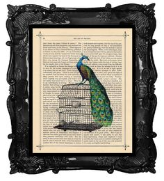 Antique Victorian Peacock Art Print bird cage illustration beautifully upcycled dictionary page victorian book art print