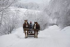 Go on a horse-drawn sleigh ride through the snow. Jingle bells are a must.