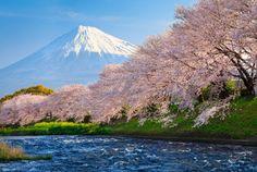 De norte a sul, apesar de ser um único país, as oito regiões do Japão possuem características culturais, linguísticas e sociais diferentes. Conheça cada uma das oito regiões do Japão, suas prefeitu…