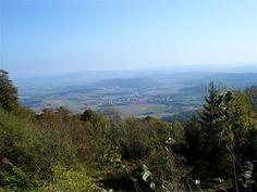 Abenteuer per pedes - 'Die Königstour' - Premiumweg P1 (Naturpark Meissner - Kaufunger Wald)