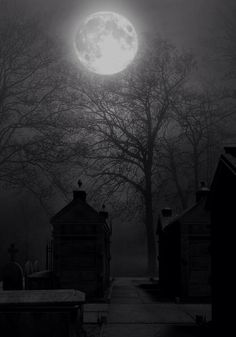 Just a Great Photo! No spooky story to tell. Cemetery in full moon BG by StarsColdNight Moon Shadow, Sombra Lunar, Old Cemeteries, Graveyards, Shoot The Moon, Moon Pictures, Good Night Moon, Misty Night, Stormy Night