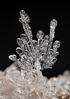 Remarkable Macro Photographs of Ice Structures and Snowflakes by Andrew Osokin  Страшная сказка... - Андрей Осокин - LensArt.ru