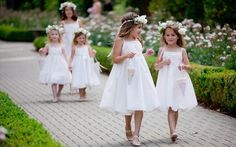 multiple flower girls