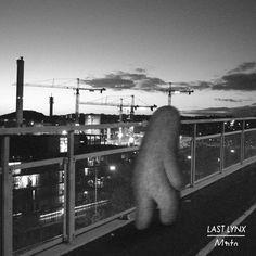 Last Lynx - Curtains