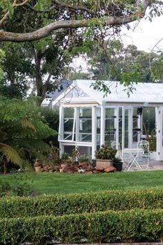 Recycled greenhouse Carbon Sink, Garden Privacy, Herbaceous Border, Weed Seeds, Garden Trees, Hedges, Gardening Tips, Lawn, Garden Design