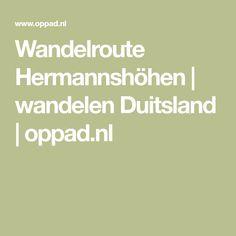 Wandelroute Hermannshöhen | wandelen Duitsland | oppad.nl