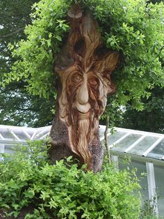 Welcome to The Carved Tree. Paul Sivell is an Environmental Artist specialising in Tree Carving, Stump Carving, Wood Sculpture and bespoke Wood Carving. Tree Faces, Tree People, Unique Trees, Tree Carving, Wooden Art, Green Man, Land Art, Wood Sculpture, Tree Art