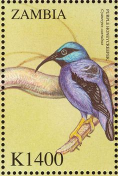 Purple Honeycreeper stamps - mainly images - gallery format