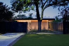 Modern asian fence design exterior modern with specimen tree specimen tree outdoor lighting