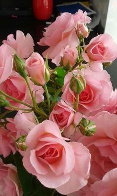 A bunch of roses, buds to full bloom. Beautiful Rose Flowers, All Flowers, Exotic Flowers, Amazing Flowers, Beautiful Gardens, Wedding Flowers, Flower Wallpaper, Pink Roses, Planting Flowers