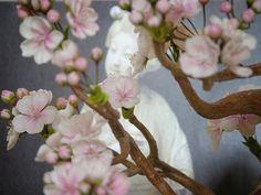 Сакура « Керамическая флористика. Цветы из холодного фарфора. Уроки и мастер-классы