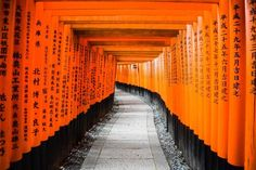 fushimi inari shrine entrance fee is completely free! From the JR Kyoto Station you can get there for 140 yen. You can visit the fushimi inari shrine So you don't need to think about the visiting hours of fushimi inari shrine when you arrive in Kyoto. Beautiful Places In Japan, Most Beautiful, Vietnam Travel, Japan Travel, Japan Trip, Kyoto Itinerary, Ryoanji, Nijo Castle, Japanese Shrine
