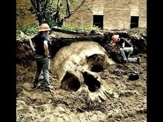 Biblické odkazy na obrami: Giants of Ancient   Nibiru Group