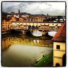 Florence, Italy - where we had a romantic sunset in golden light ..... throwing bread down to the fishes from the Ponte Vecchio .....