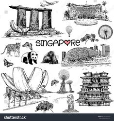 Set of hand drawn sketch style Singapore related objects isolated on white background. Singapore Art, Image Vector, Photo Album Scrapbooking, Butterfly Wallpaper, Art Journals, Card Templates, Tattos, Art Sketches, Hand Drawn