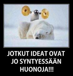 suomi fi tori hauskat videot