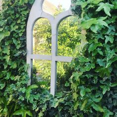 Ugly blockwork wall transformed with a mirror and some ivy Outdoor Mirror, Ivy Wall, Garden Mirrors, Bespoke Design, Planting, Garden Design, Outdoor Structures, Landscape, Flowers