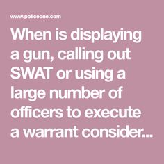 When is displaying a gun, calling out SWAT or using a large number of officers to execute a warrant considered excessive force?