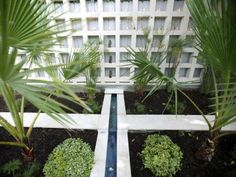 Landscape artist Jamie Durie created a unique grid wall and sleek water feature to replicate the water channels in Cairo, Egypt. The papyrus and palm trees surrounding the yard complete this relaxing space.