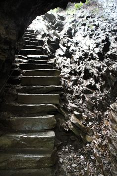 1000 images about mt leconte on pinterest caves great for Www cabins of the smoky mountains com