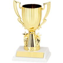 """6 1/4"""" Cup with Stars Trophy with a Marble-tone Base"""