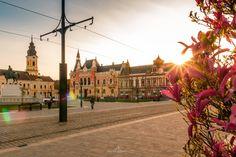 Centrul Istoric | Oradea in imagini Louvre, Architecture, City, Building, Travel, Pictures, Romania, Arquitetura, Viajes