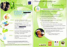 L'alimentation de bébé :  7 - 8 mois