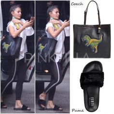 Bag Blog : Jacqueline Fernandez's Dinosaur Coach Bag