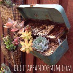 Reclaimed Tackle Box as a Succulent Planter Big Garden, Backyard Garden Design, Modern Backyard, Garden Landscaping, Garden Art, Garden Works, Gravel Garden, Garden Junk, Garden Oasis