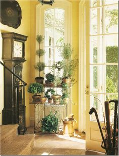 Topiary tiered display and a vintage walking stick collection enhance a sunny yellow entryway with white French windows and door...with a dramatic black grandfather clock standing guard...Design Chic: Things We Love: Walking Canes