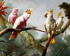 5 classical parrot on tree oil paintings Fat Orange Cat, Flower Mural, Louvre, Tropical Birds, Bird Prints, Beautiful Birds, Pet Birds, Parrot, Artist