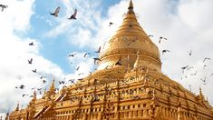 There are many ways to get around Bagan, but one option far surpasses the others. Here's the scoop.