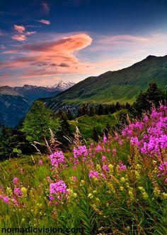 The Swiss Alps, Switzerland © John & Tina Reid